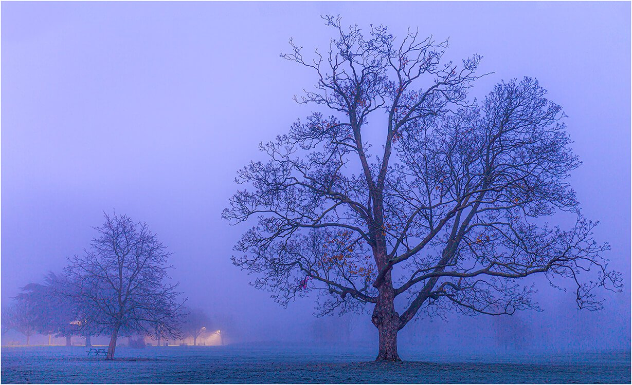 Photocraft Camera Club - Little and Large by Brian C