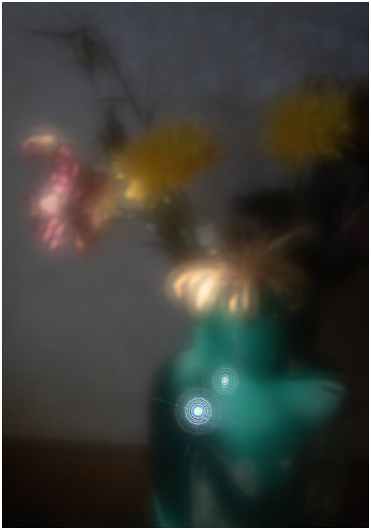 Photocraft Camera Club - FLOWERS IN A VASE (ZONE PLATE IMAGE) by David P