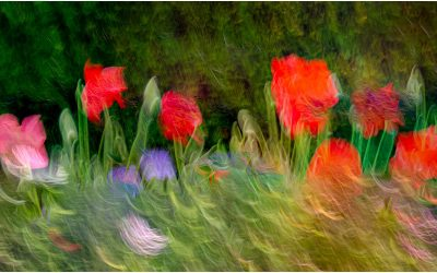 Creative Photography – Show and tell evening