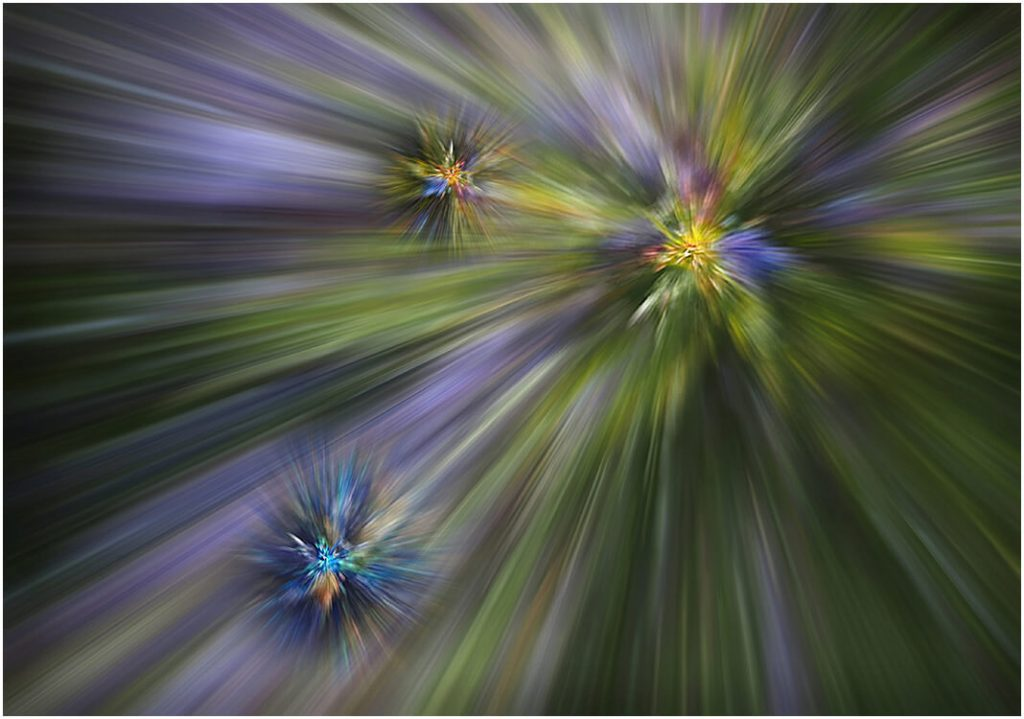 Photocraft Camera Club - WARPING THROUGH COLOUR SPACE by Dave S