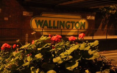 A LOCAL WALK FOR LOCAL PEOPLE – WALLINGTON BY NIGHT
